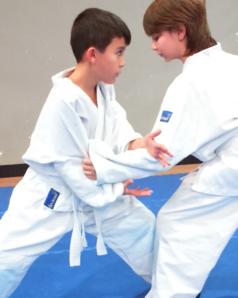 lider aikido