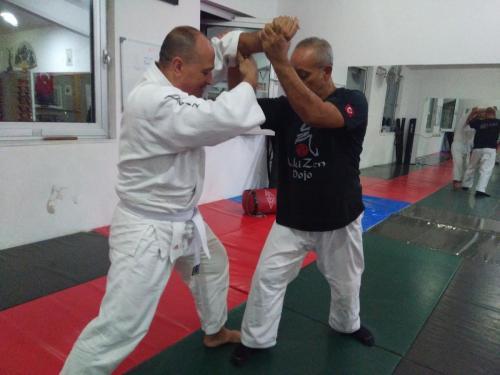 Aikido Selfe Defance